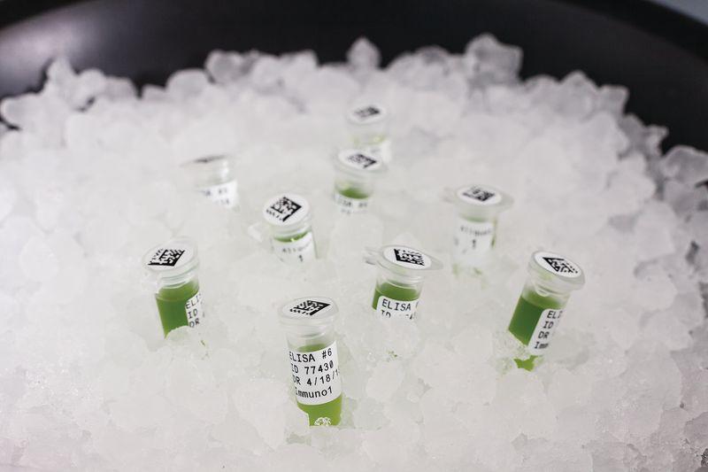 Etiquettes de capuchons et de tubes de laboratoire en polyester pour imprimante BMP51