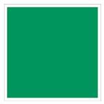 Carré vert à bordure blanche pour tout signalement lié à l'évacuation ou aux premiers secours.
