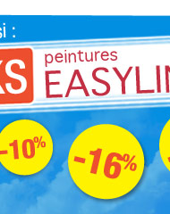 Les packs peintures Easyline™