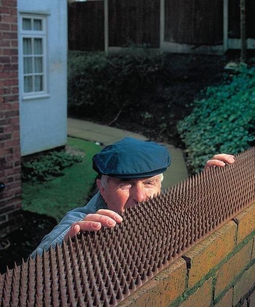 Dissuasore da muro anti intrusione - Dissuasori per volatili e animali