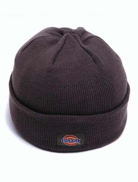 Dickies® Thinsulate Work Cap