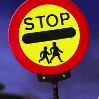 STOP Children Crossing - Lollipop Traffic Sign