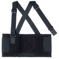 Ergodyne Economy Back Support Belt