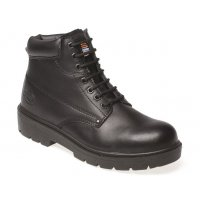 Dickies® Antrim Safety Boots