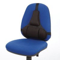ERGOview Lumbar Support
