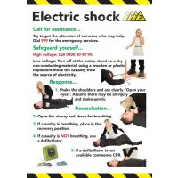 Safety Training Poster - Electric Shock