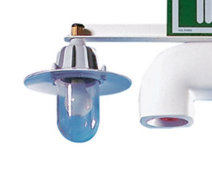 Overhead Light - Hughes Heated Safety Shower