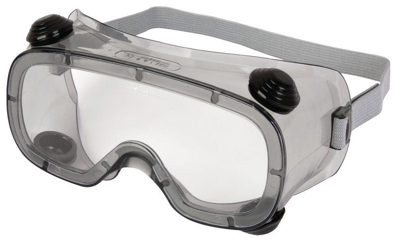Delta Plus Polycarbonate Goggles
