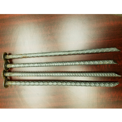 Asphalt Rebar Spikes