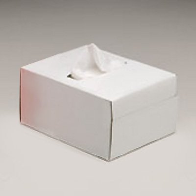 Allegro® Industries Lens Cleaning Tissues 0358-01E