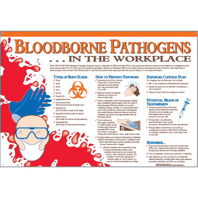 First Aid Wall Charts - Bloodborne Pathogens in the Workplace