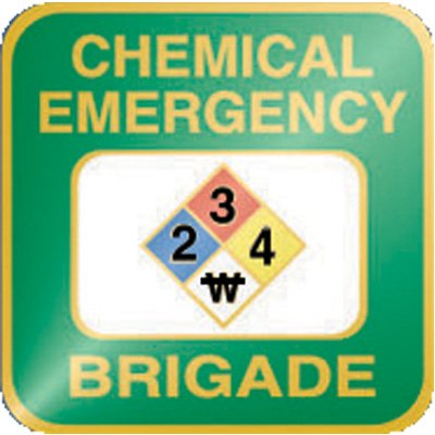 Chemical Emergency Brigade Pin