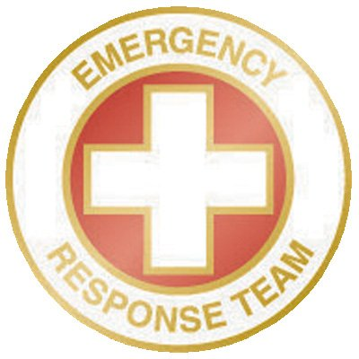 Emergency Response Team Pin