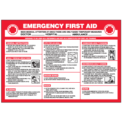 Emergency First Aid Workplace Safety Wallchart