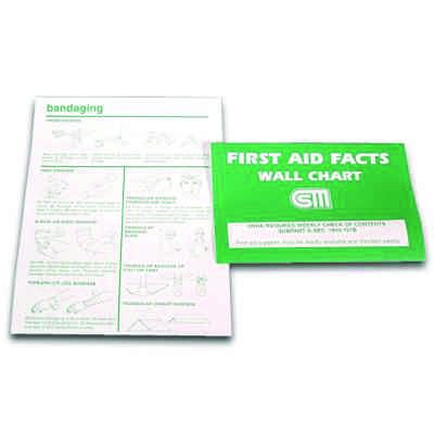 First Aid Facts Wall Chart 166