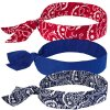 Ergodyne® Chill-Its® 6700 Cooling Bandanas