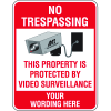 Semi-Custom Security & Stop Signs - No Trespassing With Graphic
