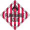 Flammable Solid Hazardous Material Placards