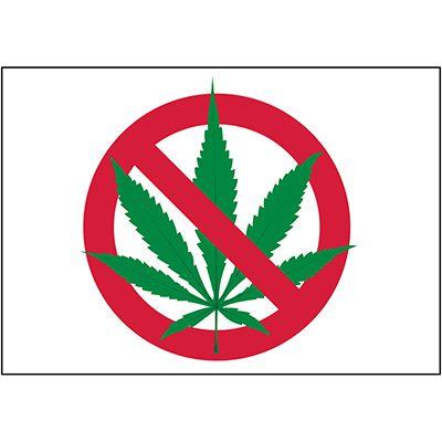 No Smoking Labels - Marijuana Prohibited Graphic